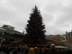 The Covent Garden Christmas Tree